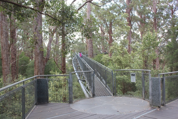 The Tree Top Walk