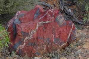 The spectacular colours of the outback