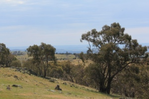 Looking out over Wagga Wagga