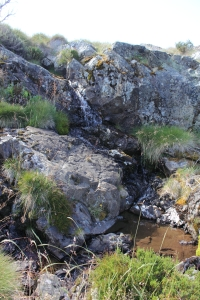 Broken Dam Gully
