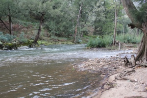 The junction of Micalong Creek and Goodradigbee River