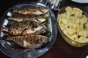 Orada fish Croatian style