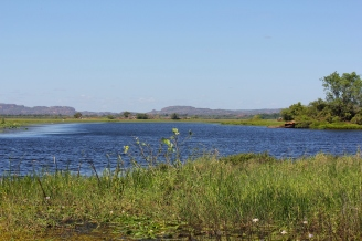 A beautiful billabong full of fish, birds and surrounded by food sources with the occasional croc